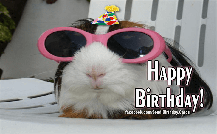 Birthday Cards | Happy Birthday!