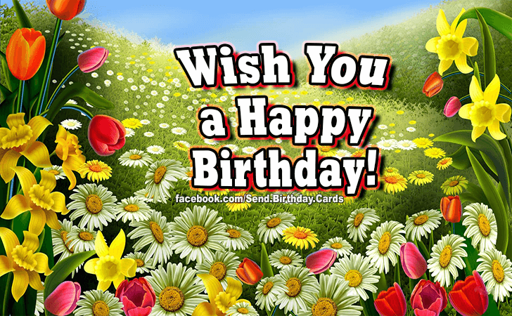 Happy Birthday Cards Images - Wish You...