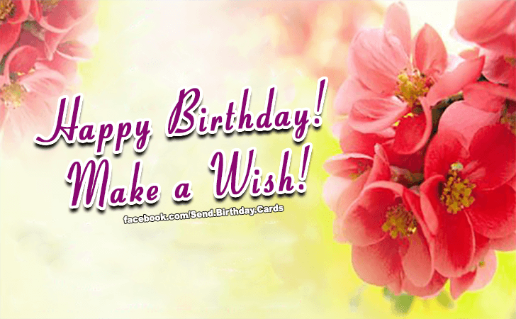 Birthday Cards Images | Happy Birthday Images | Happy Birthday! Make a Wish!