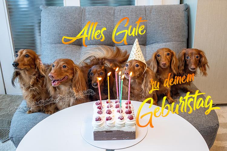 Geburtstagskarten | Alles Gute zu Deinem Geburtstag