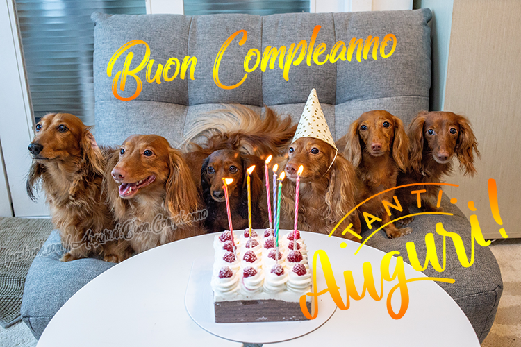 Buon Compleanno - Tanti Auguri di Buon Compleanno (Auguri, Frasi e Immagini di Buon Compleanno)