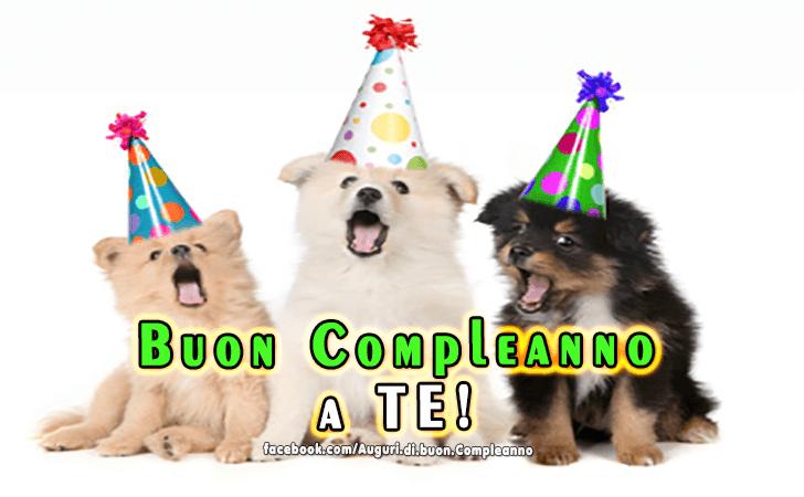 Buon Compleanno a TE!(Frasi e Immagini)