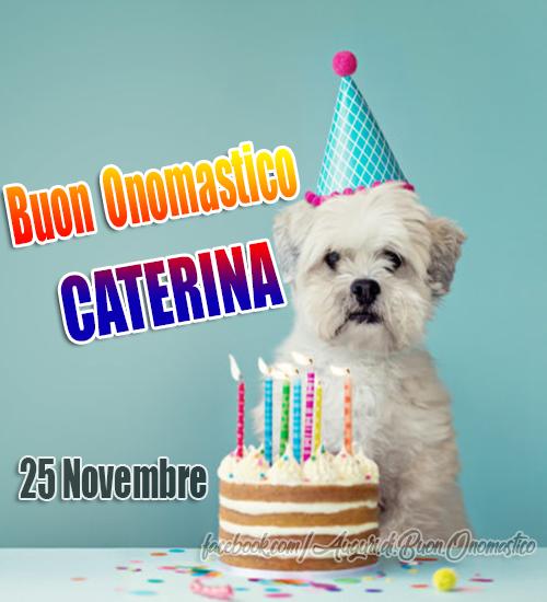 Buon Onomastico Caterina (25 novembre) - Onomastico Caterina (25 novembre). Onomastico del nome Caterina.