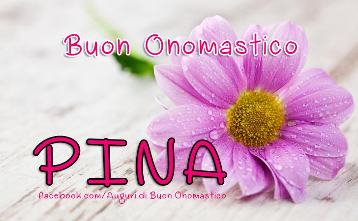 Buon Onomastico Pina - Buon Onomastico Pina - Onomastico del nome Pina