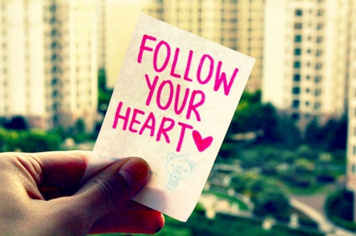 Love is all | FOLLOW YOUR HEART ♥